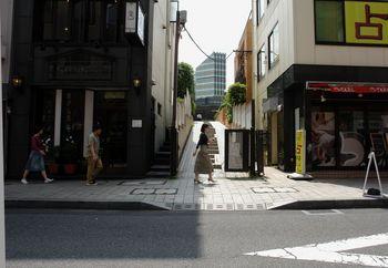 2016.5青山通り1.jpg