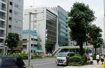 2016.5青山通り12.jpg